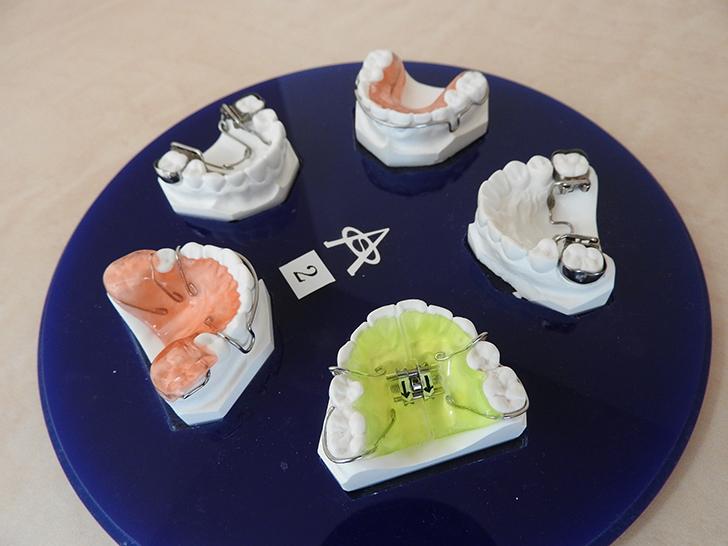 歯型 常盤矯正歯科医院